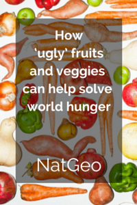 How_Ugly_Fruits_and_Vegetables_Can_Help_Solve_World_Hunger.png