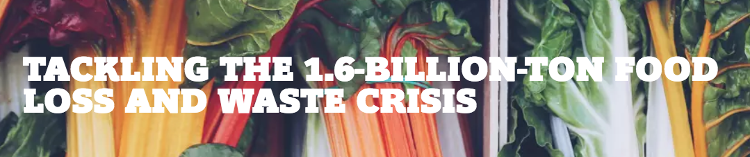 Boston Consulting Group Food Waste