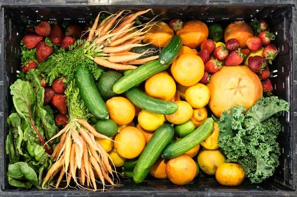 national_food_waste_reduction_no_border